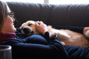 dog-love-Jon